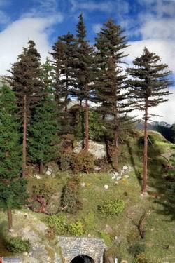 Für die bevorstehenden Waldmotive wurden kräftig neue Tannen gebaut.