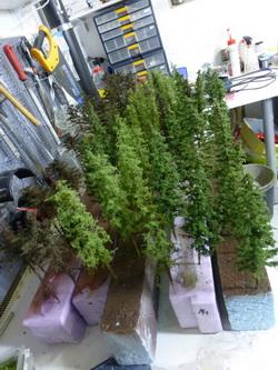 Ein Bild wie Weihnachten! Zahlreiche Tannen und Lärchen wurden gebaut - ich hoffe, dass diese nicht so schnell auf der Anlage verschwinden...