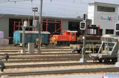 Für die Firma Barit stehen einige Gleise zum Verladen ihrer Güter zur Verfügung.