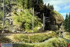 Am Ende der eher kargen Rheinschlucht spriesst das Grün beim Wackenausporn